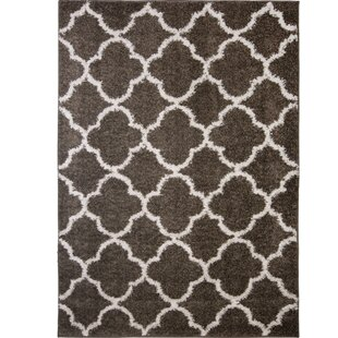 Low priced Synergy Dark Gray/White Area Rug By Nicole Miller