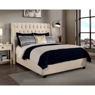 Great choice Difranco Upholstered Panel Bed with Mattress by Darby Home Co Reviews (2019) & Buyer's Guide