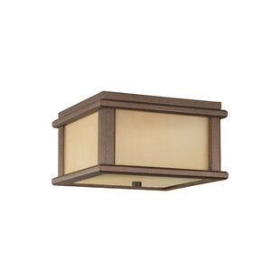 Shopping for Olympia 2-Light LED Outdoor Flush Mount By Brayden Studio