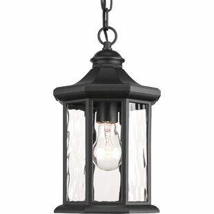 Enola 1 Light Outdoor Hanging Lantern