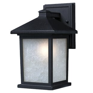 Wabansia 1-Light Outdoor Wall Lantern