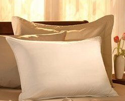 Price Check Egyptian-Quality Cotton Feather Standard Pillow ByAlwyn Home