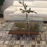 Chrisley Coffee Table by Brayden Studio®