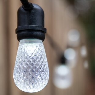 Best Reviews 24-Light Globe String Lights By Wintergreen Lighting