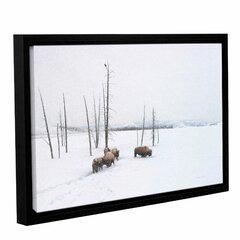 Winter Bison Wayfair