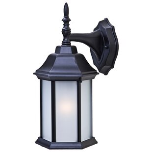 Pritzker 1-Light Outdoor Wall Lantern
