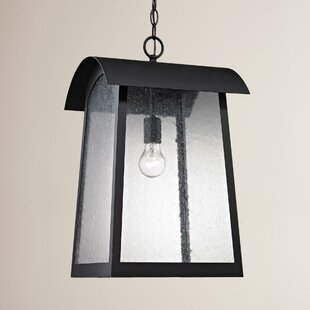 Myrtle Avenue 1-Light Outdoor Hanging Lantern