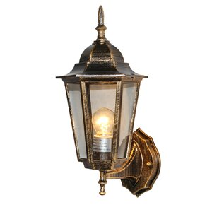 1-Light Outdoor Wall Sconce