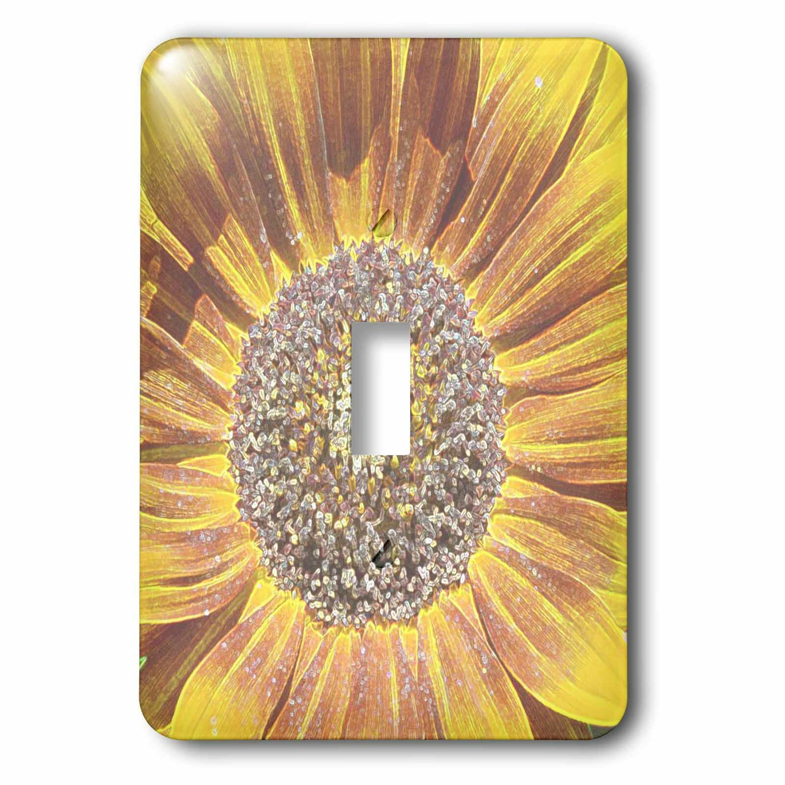 3drose Crystal Colo Sun 1 Gang Toggle Light Switch Wall Plate Wayfair