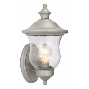 Eugenie 1-Light Outdoor Sconce