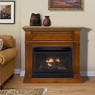Natural Gas & Propane Indoor Fireplaces You\'ll Love | Wayfair