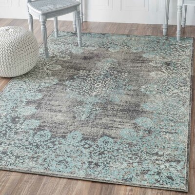 Farmhouse Amp Rustic Teal Area Rugs Birch Lane