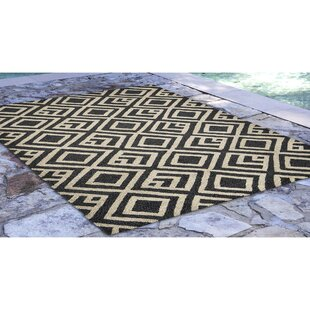 Chamness Hand-Tufted Charcoal/Beige Indoor/Outdoor Area Rug