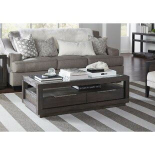 Monett Wooden Coffee Table with Storage