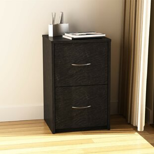 Superior 2 Drawer File Cabinet