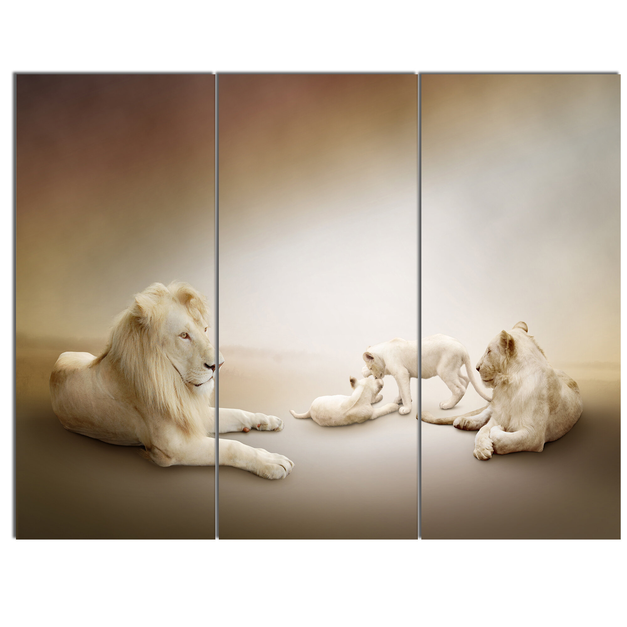 White lion family 3 piece wall art on wrapped canvas set