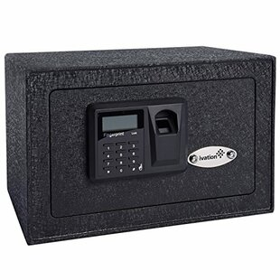 Ivation Home Security Safe with Dual-Lock by Ivation