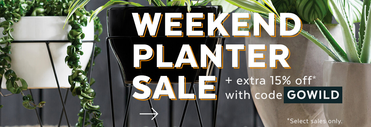 Weekend Planter Sale