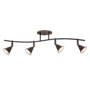 track lighting on sloped ceiling. Interesting Lighting Brushton 4Light Ceiling Track Kit In Lighting On Sloped C