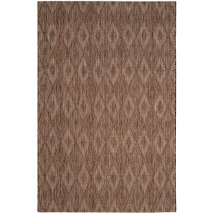 Brodie Brown Indoor/Outdoor Area Rug