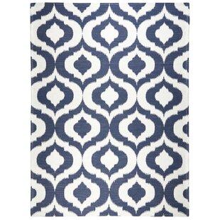 Rio Navy Blue/White Indoor/Outdoor Area rug