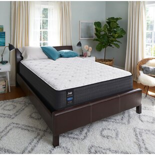 Response™ Performance 13'' Medium Innerspring Mattress and Box Spring by Sealy