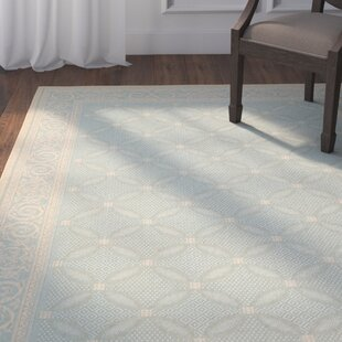 Beasley Aqua/Cream Indoor/Outdoor Rug