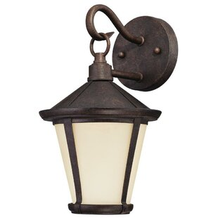 Best Choices Darcy 1-Light Outdoor Wall Lantern By Westinghouse Lighting