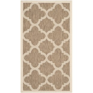 Larson Brown Indoor Area Rug By Sol 72 Outdoor