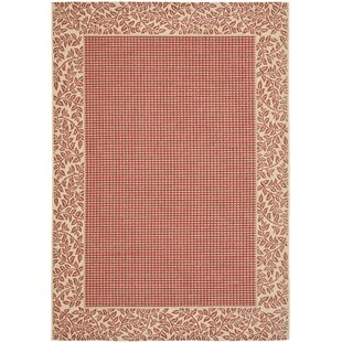 Short Woven Red Natural Indoor Outdoor Rug