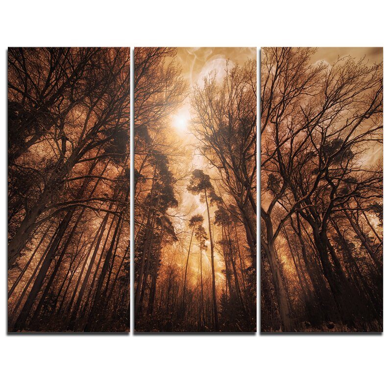 Designart Picturesque Autumn Forest 3 Piece Graphic Art On Wrapped Canvas Set Wayfair