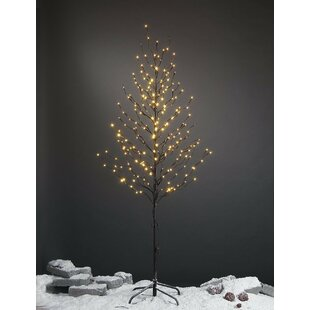 Pre-Lit LED 240 Light Star Tree by Lightshare