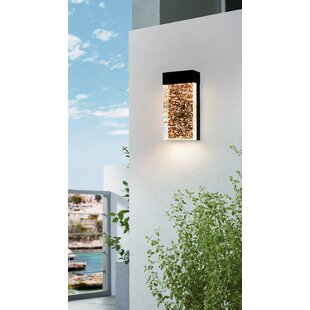 Price Check Pelkey LED Outdoor Flush Mount By Orren Ellis