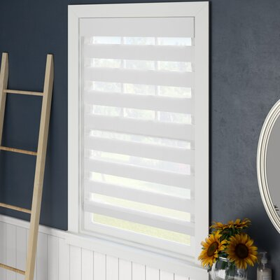 Symple Stuff Sheer Roll-Up Shade Blind Size: 23 W x 72 L, Blind Color: White