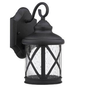Brogden 1-Light Outdoor Wall Lantern