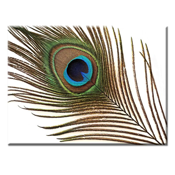 World Menagerie Peacock Feather By Norman Wyatt Jr Wrapped Canvas Print Wayfair