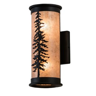 Compare & Buy Wylie 2-Light Outdoor Sconce By Loon Peak