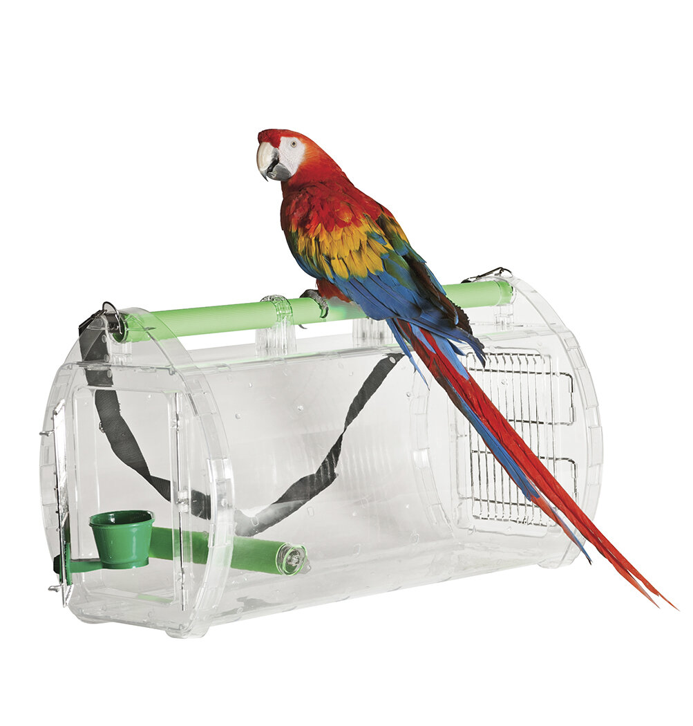 Collapsible Parrot Amazon Bird Travel Carrier Cage Stand Wood Perch Food Bowls