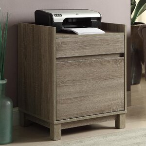 Tracey 2-Drawer Filing Cabinet