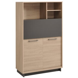 Bradan Dishes 2 Door Accent Cabinet by Latitude Run