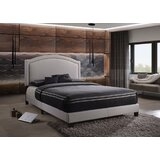Duffner Queen Upholstered Platform Bed by House of Hampton®