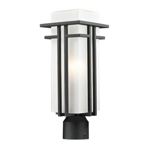 Big Save Weitzel Outdoor 1-Light Lantern Head By Winston Porter