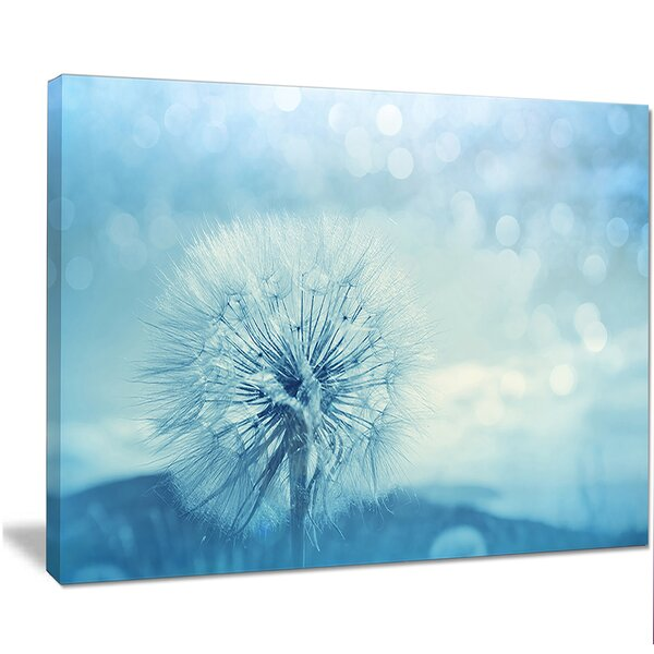 Designart Close Up White Dandelion With Filter Graphic Art On Wrapped Canvas Wayfair