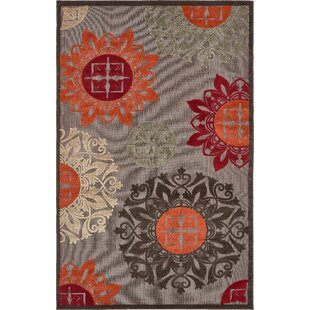 Jessica Brown Indoor/Outdoor Area Rug