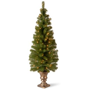 Outdoor christmas trees youll love montclair entrance green spruce artificial christmas tree with 100 pre lit clear lights with urn base aloadofball Gallery