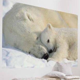 50de64bca6c Komar Polar Bears Wall Mural