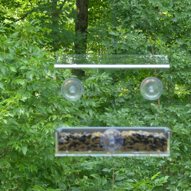 Petfusion Tranquility Window Tray Bird Feeder Reviews Wayfair