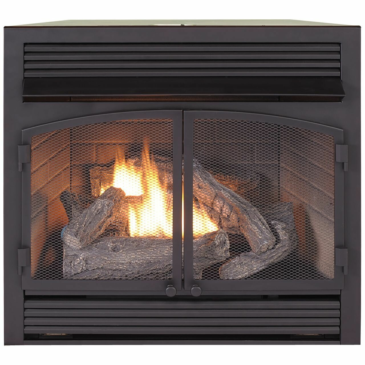 Superb Vent Free Recessed Natural Gas Propane Fireplace Insert Interior Design Ideas Apansoteloinfo