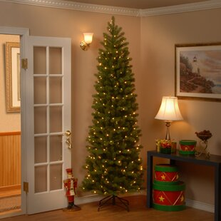 fe1633c2599 Downswept Douglas 7.5  Green Fir Artificial Christmas Tree with 350 Multi-Colored  Lights