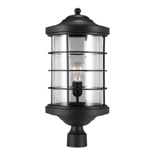 Affordable Newcastle Outdoor 1-Light Lantern Head By Breakwater Bay